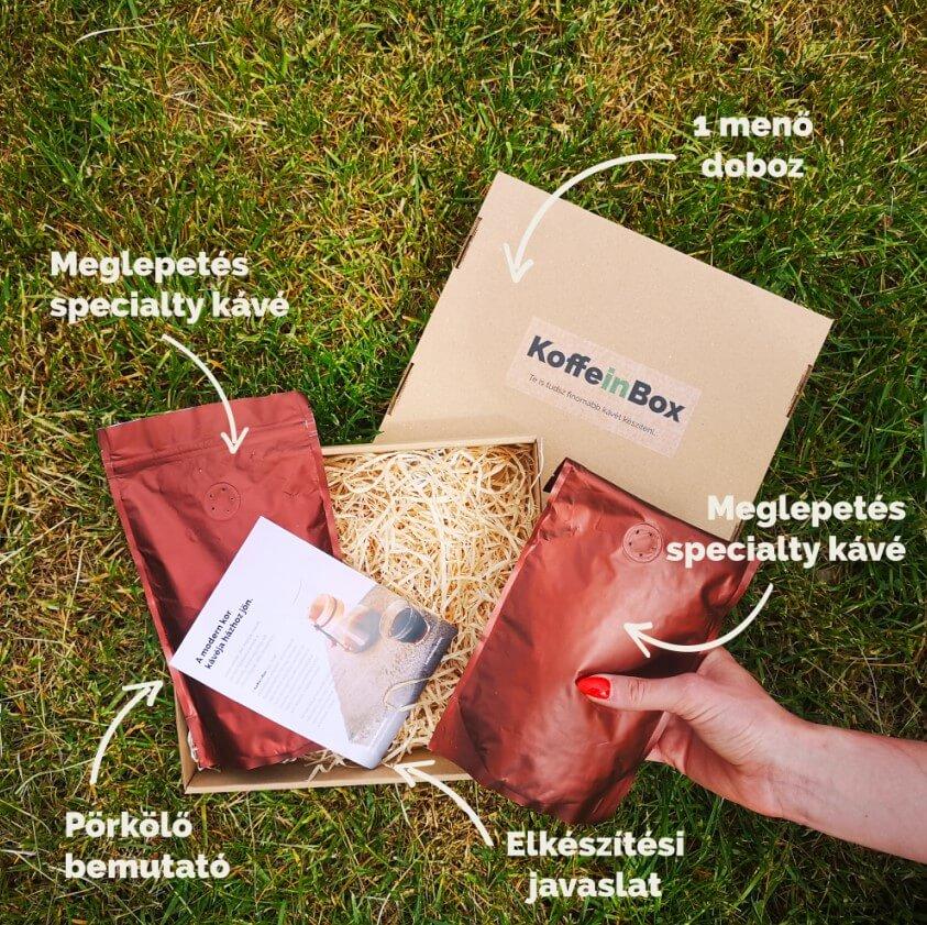 A kávé rendelés 300 gramm kávét és oktatóanyagot tartalmaz
