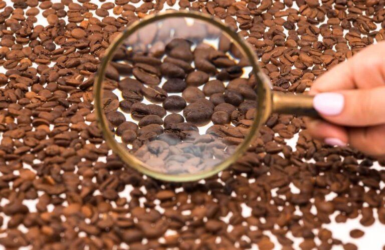 A legjobb szemes kávé vizsgálata, vásárlása
